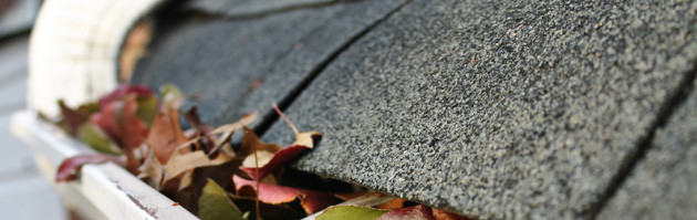 Tips for cleaning your gutters